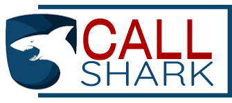 Call Shark Logo 4Plan Automotive Web Agency